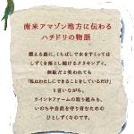 ill_hachidorinomonogatari